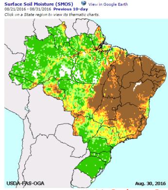brazildry
