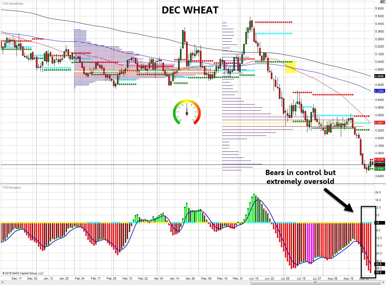 tak-dec-wheat-9-6-2016