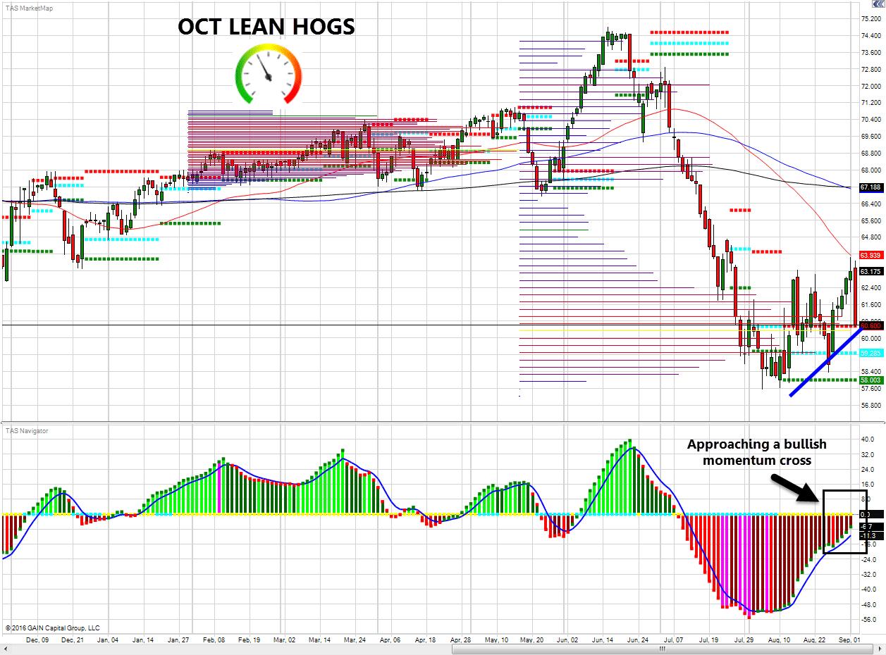 tak-lean-hogs-9-6-2016