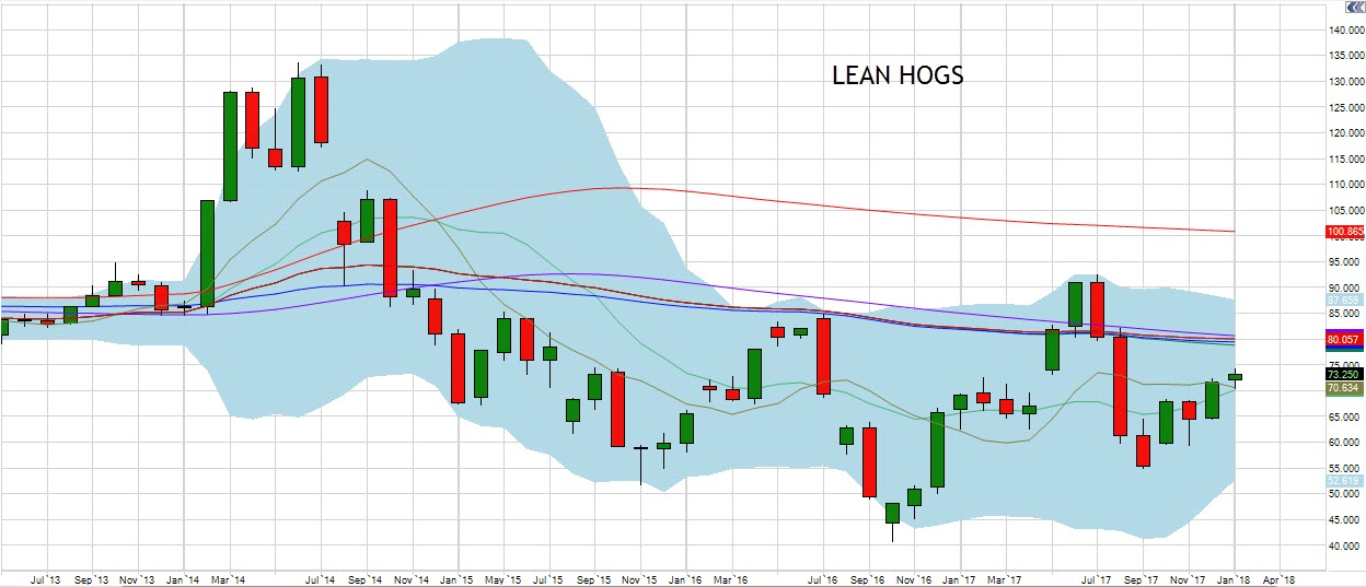 January Lean Hogs Chart