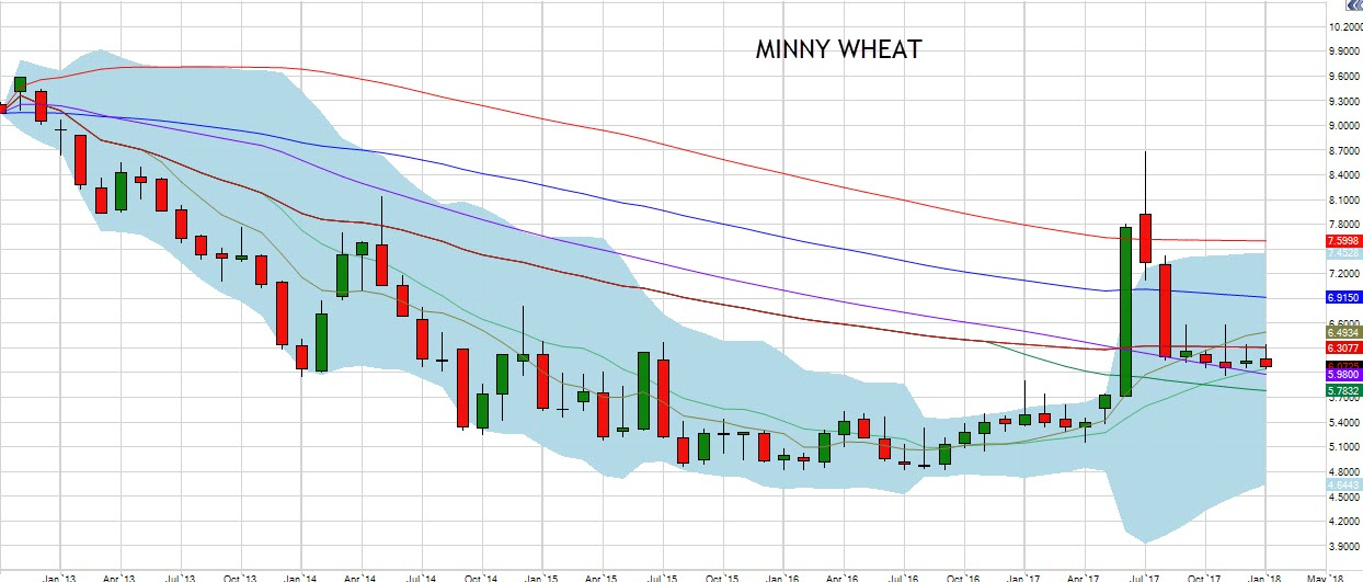 January Minny Wheat Chart
