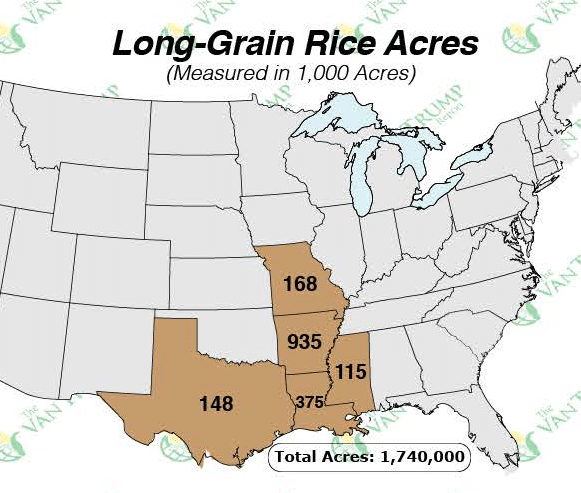 Andy Daniels Rice Commentary - US Rice Acres